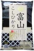 富山コシ5kg